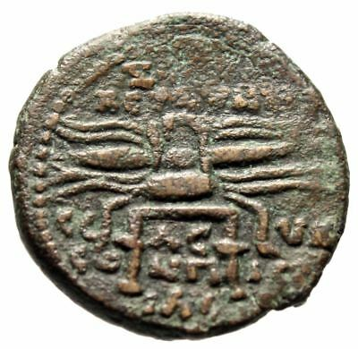"Septimius Severus AE23 ""Thunderbolt on Stool"" Syria, Seleukia Pieria Very Rare"