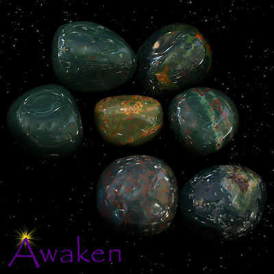 *ONE* BLOODSTONE Natural Tumbled Stone Approx 15-20mm *TRUSTED SELLER*
