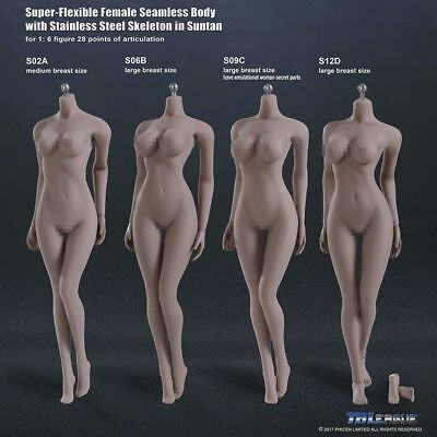 TBLeague  1/6 SACLE FEMALE PHICEN   Steel Skeleton Seamless pale/ suntan FIGURE