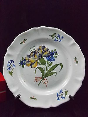 Franche Comte-Superbe Plat Aux Iris Periode Xviii°-Agrafage Remarquable-N°1
