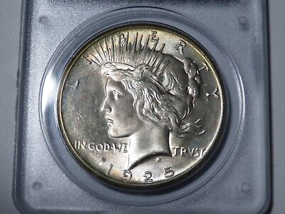 1925 Peace Dollar PCGS MS64 CAC Rattler Holder