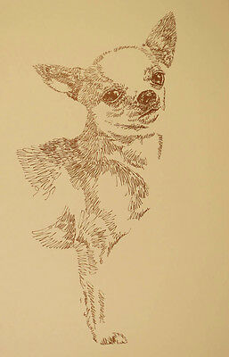 Chihuahua dog art portrait drawing PRINT 48 Kline adds dogs name free GREAT GIFT