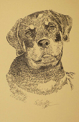 ROTTWEILER DOG BREED ART PRINT #33 Kline will add dogs name free  ROTTIE poster