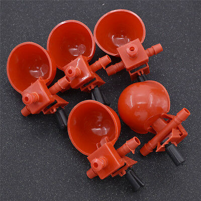 5 Pcs Water Drinking Cups Feeder Holder Use for Chicken Pigeon Poultry Fowl
