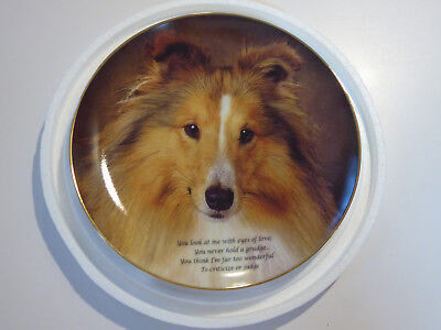 Danbury Mint Cherished Shelties EYES OF LOVE Shetland Sheepdogs Plate w/COA