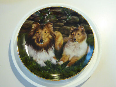 Danbury Mint Shetland Sheepdogs/Sheltie Plate LEISURE TIME by Edward Aldrich