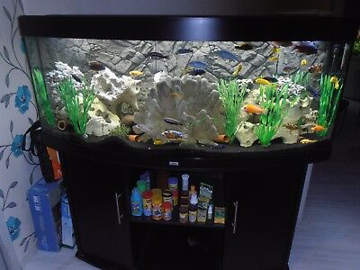 aquarium juwel vision 450 liter m led 3d r ckwand u. Black Bedroom Furniture Sets. Home Design Ideas