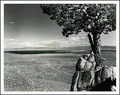 1950s Vintage 8 x 10 Photo, OVERLOOK #2 of MONO LAKE from CONWAY SUMMIT, CALIF.