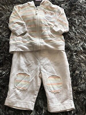 Pumpkin Patch Baby Bunny Tracksuit Unisex 000 Or 0-3 Months - PERFECT FOR EASTER
