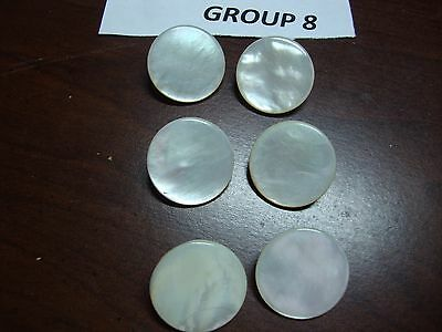 6 Antique Mother Of Pearl Button Brass Shank 7/8 Inch Diameter 19th Century