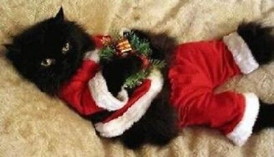 Christmas Cat Magnet #5