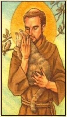 Saint Francis Patron of Cats Magnet #13