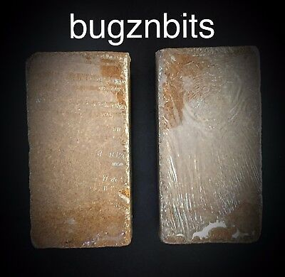 Coco Fiber, Coir, Substrate x2 For Frogs, Giant African Land Snail FREE P&P