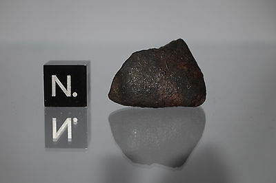Gao Guenie meteorite H5 chondrite 1960 WITNESSED FALL 8.35g nice complete stone