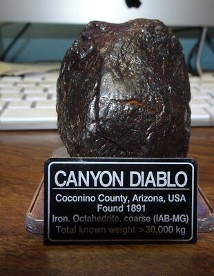 384 gm . CANYON DIABLO IRON METEORITE ; TOP GRADE WITH LABEL; STAND,