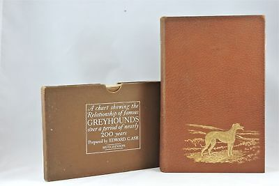 Rare Dog Book of The Greyhound Limited Edition Edward Ash Hounds Coursing Deluxe