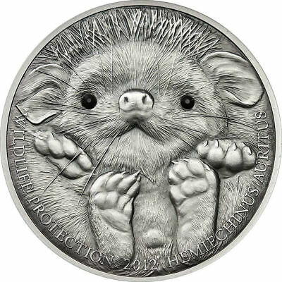 Mongolia 2012 500 Togrog Wildlife Protection Long-eared Hedgehog coin in capsule