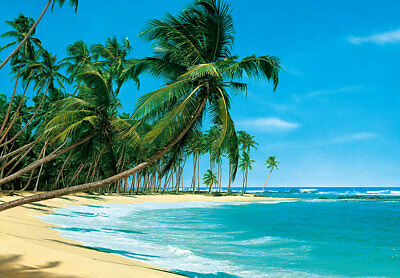 366x254cm wallpaper for bedroom wall mural Palms on the beach