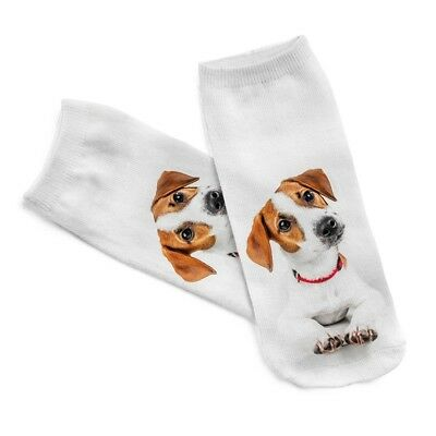 Low cut dog socks - Jack Russell Terrier - Stubborn Fearless Energy dogs sock