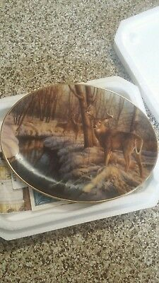 Winter's Calm by Greg Alexander Woodland Tranquility Plate with deer