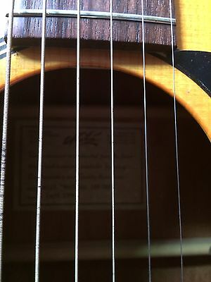 Maton M225 Acoustic Guitar