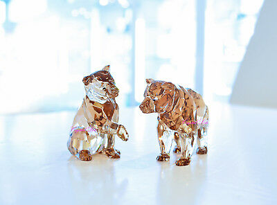 Swarovski 2017 SCS AE Bear Cubs Limited Wild Animal 5236593 Brand New In Box