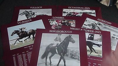 horse racing prints x7 .lonhro. octagonal. vo rogue. 60cmx42cm