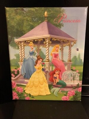 Disney Princess 8x10 Cavas Wall Hanging