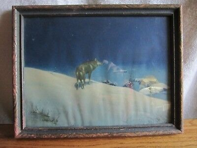 Lone Wolf Picture in Frame 13 X 10