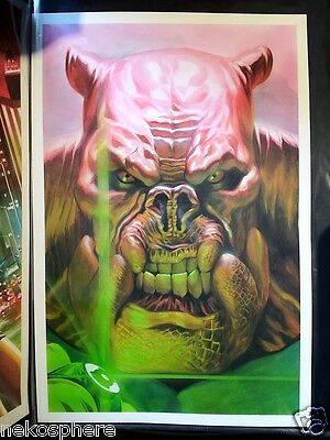 Brightest Day Green Lantern Emerald Warriors #4 Variant Painted Cover - Kilowog