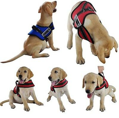 Big Soft Adjustable Harness Pet Large Dog Walk Out No Pull Harness Vest Collar