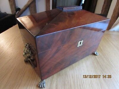 19th century Mahogany sarcophagus tea caddy lion mask ring handles paw feet