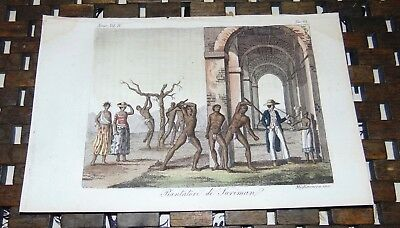 ANTIQUE Italy COPPER ENGRAVING Print 1828 SURINAM PLANTATION So America 62A