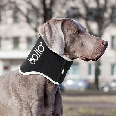 Balto – Dog no-lick Neck Brace : BT-NECK-ECO