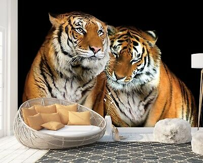Wall Mural Photo Wallpaper Picture EASY-INSTALL Fleece Animals Tiger Cat Poster