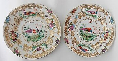 "Great Antique Pair of Booths ""Chelsea Bird"" 10"" Dinner Plates, 19th Century"