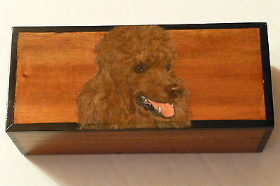 Brown Poodle Beautifully Handpainted & Detailed On Quality Teakwood Box, U.S.A.