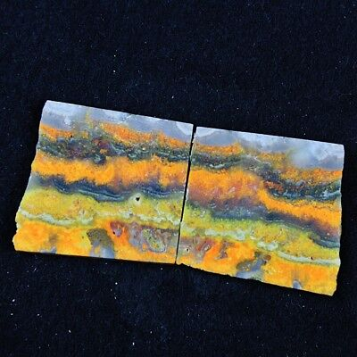 204ct Natural Bumble Bee Jasper Pair Rough Slice From Indonesia GC73
