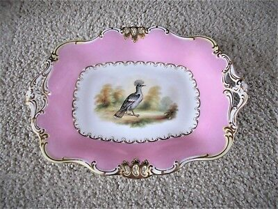 """Antique Rectangular 11"""" Hand Painted Davenport Footed Serving Dish Circa 1840"""