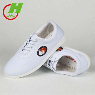 Unisex Wu Shu Martial Arts Training Kung Fu Canvas Shoes 1 Pair Tai Chi Shoes
