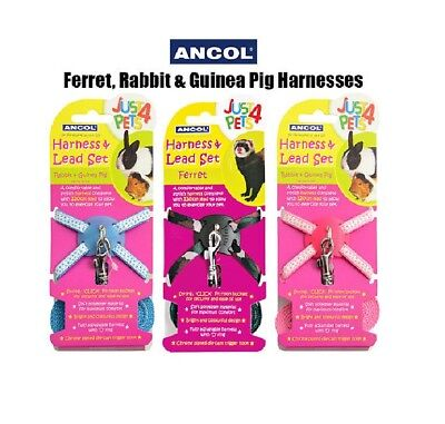 Ancol Adjustable Ferret Rabbit Guinea Pig Harness & Lead Set Small Pet Animal