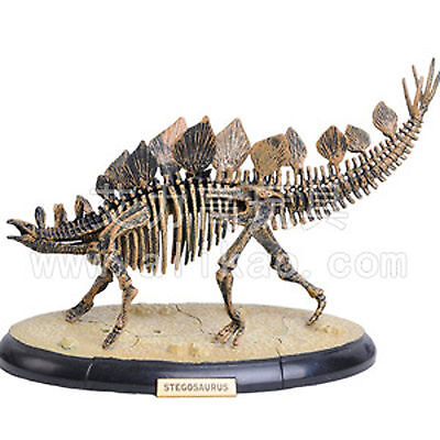 4D Animal Puzzle Toy Assembly Stegosaurus Dragon Skeleton #B-103
