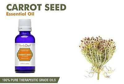 Carrot Seed Essential Oil 100% Pure Natural Therapeutic Grade Cold Pressed Oils