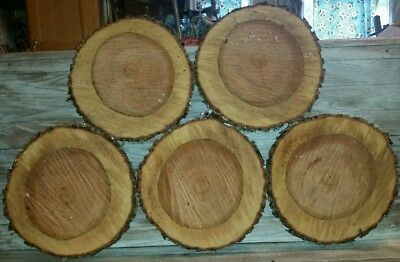 "LOT OF 5 Fresh Cherry   Slabs Slice Tree Trunk 11"" x 1"" Rustic Wood"