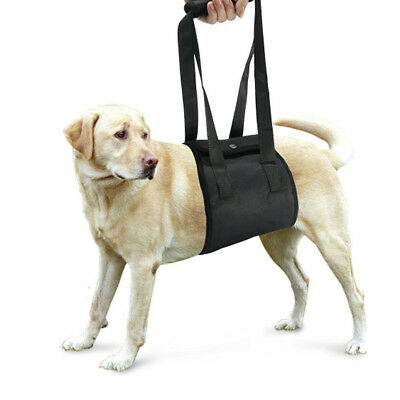 Didog Full Body Dog Lift Support Harness Injury Back Hip Assist Pet Dog Carrier