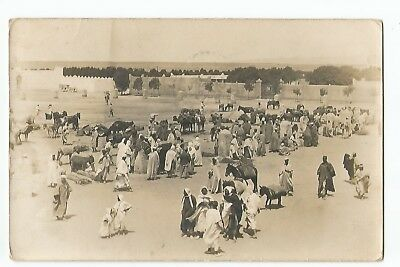 Cpa Algerie , Carte Photo Colomb Bechar
