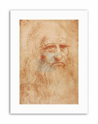 LEONARDO DA VINCI S Drawing Old Master Canvas art Prints