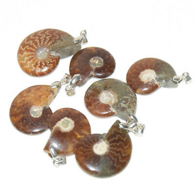 Natural Nautilus Ammonite Fossil Shell Pendant For Necklace DIY Jewelry Making