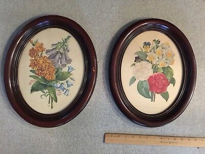 "Vintage Pair Oval  Old Floral Prints in Wood Frames Glass 12"" x 15"""
