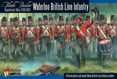 Napoleonic Waterloo British Line Infantry (24)